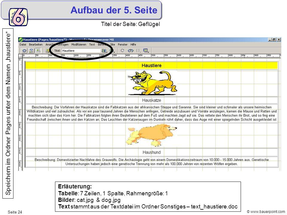© www.bauerpoint.com Seite 24 Aufbau der 5. Seite Titel der Seite: Geflügel Speichern im Ordner Pages unter dem Namen haustiere Erläuterung: Tabelle: