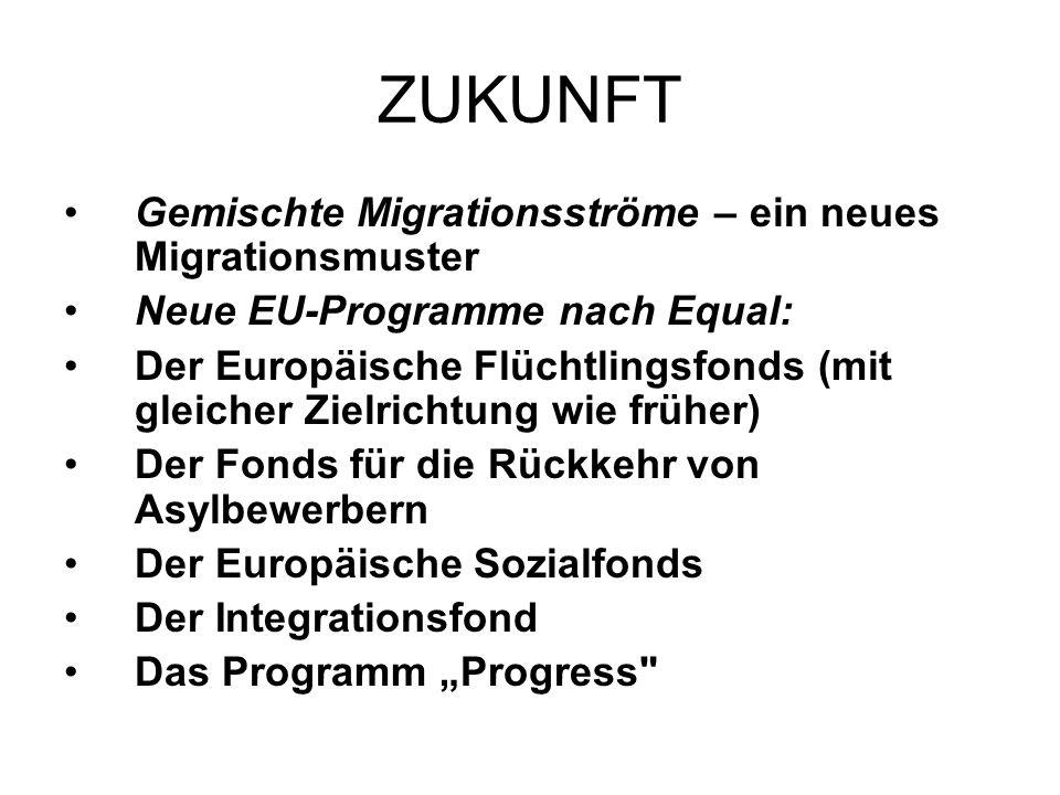 ZUKUNFT Gemischte Migrationsströme – ein neues Migrationsmuster Neue EU-Programme nach Equal: Der Europäische Flüchtlingsfonds (mit gleicher Zielrichtung wie früher) Der Fonds für die Rückkehr von Asylbewerbern Der Europäische Sozialfonds Der Integrationsfond Das Programm Progress