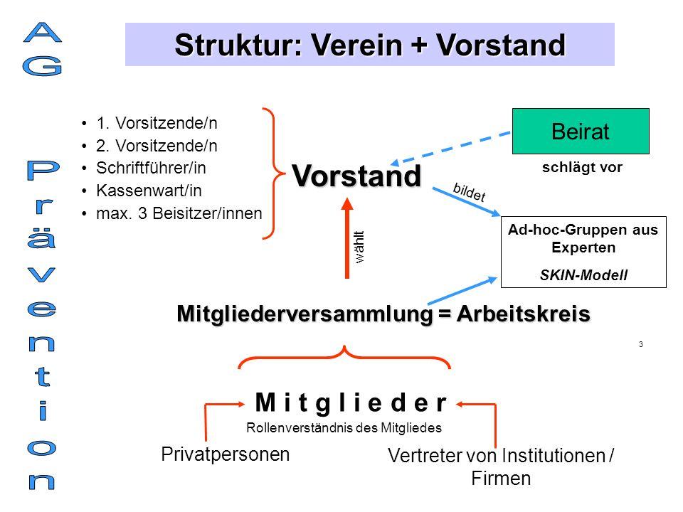 Struktur: Verein + Vorstand M i t g l i e d e r Privatpersonen Vertreter von Institutionen / Firmen Mitgliederversammlung = Arbeitskreis Vorstand 1.