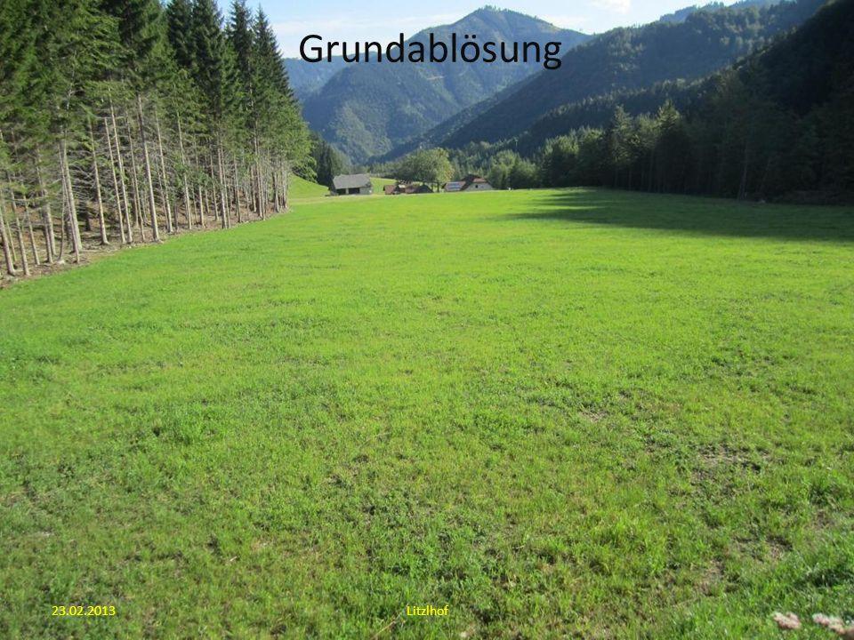 23.02.2013Litzlhof Wald – Weide – Trennung (Neuregulierung)