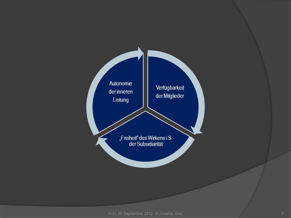 Verfügbarkeit der Mitglieder Freiheit des Wirkens i.S. der Subsidiarität Autonomie der inneren Leitung 8