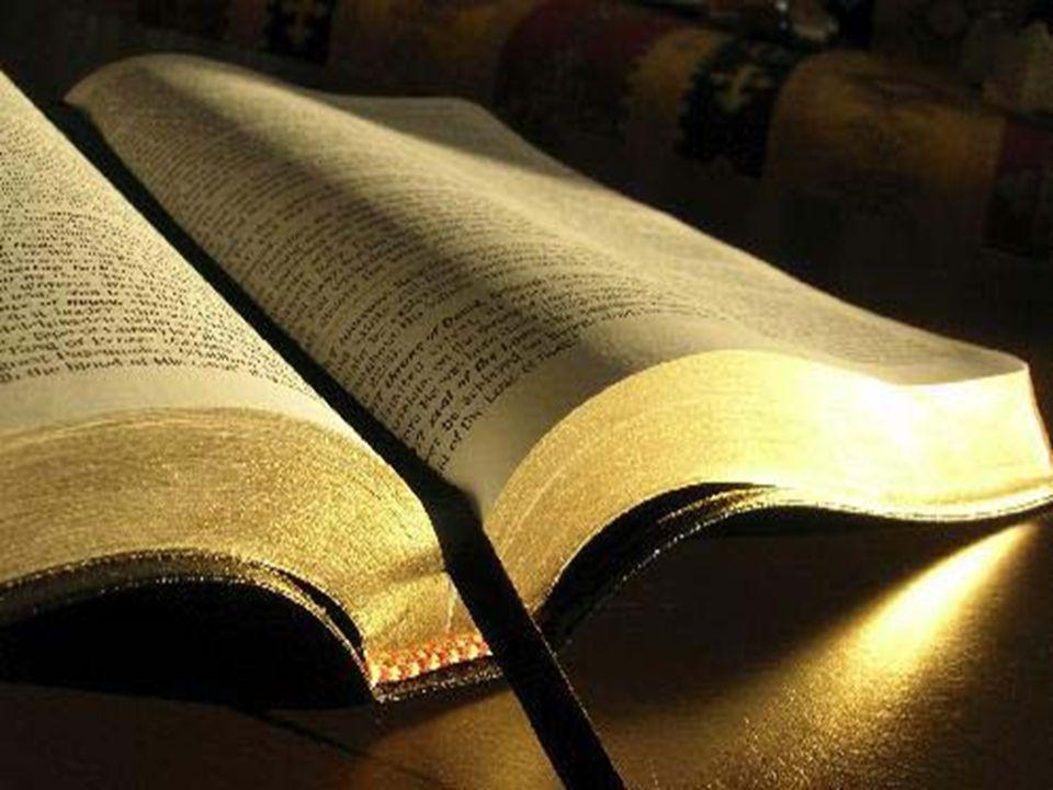 Dein Wort ist meines Fußes Leuchte und ein Licht auf meinem Wege.