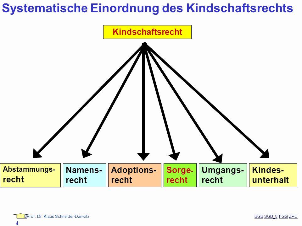 88Prof. Dr. Klaus Schneider-Danwitz BGB SGB_8 FGG ZPOBGBSGB_8FGGZPO 4 Abstammungs- recht Namens- recht Adoptions- recht Sorge - recht Umgangs- recht K