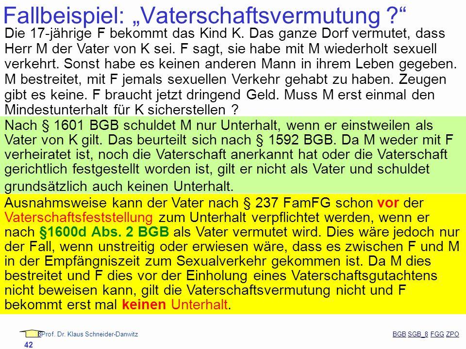 88Prof. Dr. Klaus Schneider-Danwitz BGB SGB_8 FGG ZPOBGBSGB_8FGGZPO 42 Fallbeispiel: Vaterschaftsvermutung ? Die 17-jährige F bekommt das Kind K. Das