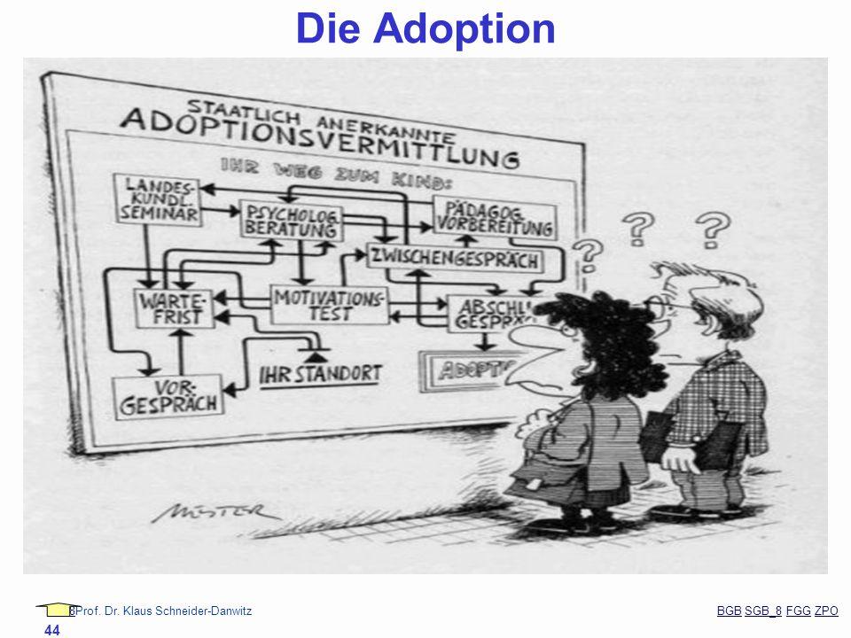 88Prof. Dr. Klaus Schneider-Danwitz BGB SGB_8 FGG ZPOBGBSGB_8FGGZPO 44 Die Adoption