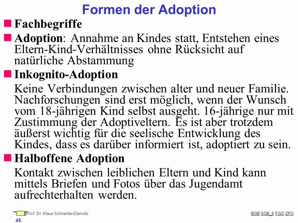 88Prof. Dr. Klaus Schneider-Danwitz BGB SGB_8 FGG ZPOBGBSGB_8FGGZPO 45 Fachbegriffe Adoption: Annahme an Kindes statt, Entstehen eines Eltern-Kind-Ver