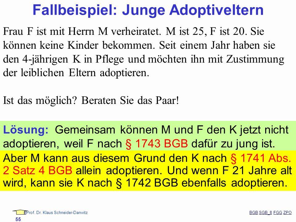 88Prof. Dr. Klaus Schneider-Danwitz BGB SGB_8 FGG ZPOBGBSGB_8FGGZPO 55 Frau F ist mit Herrn M verheiratet. M ist 25, F ist 20. Sie können keine Kinder