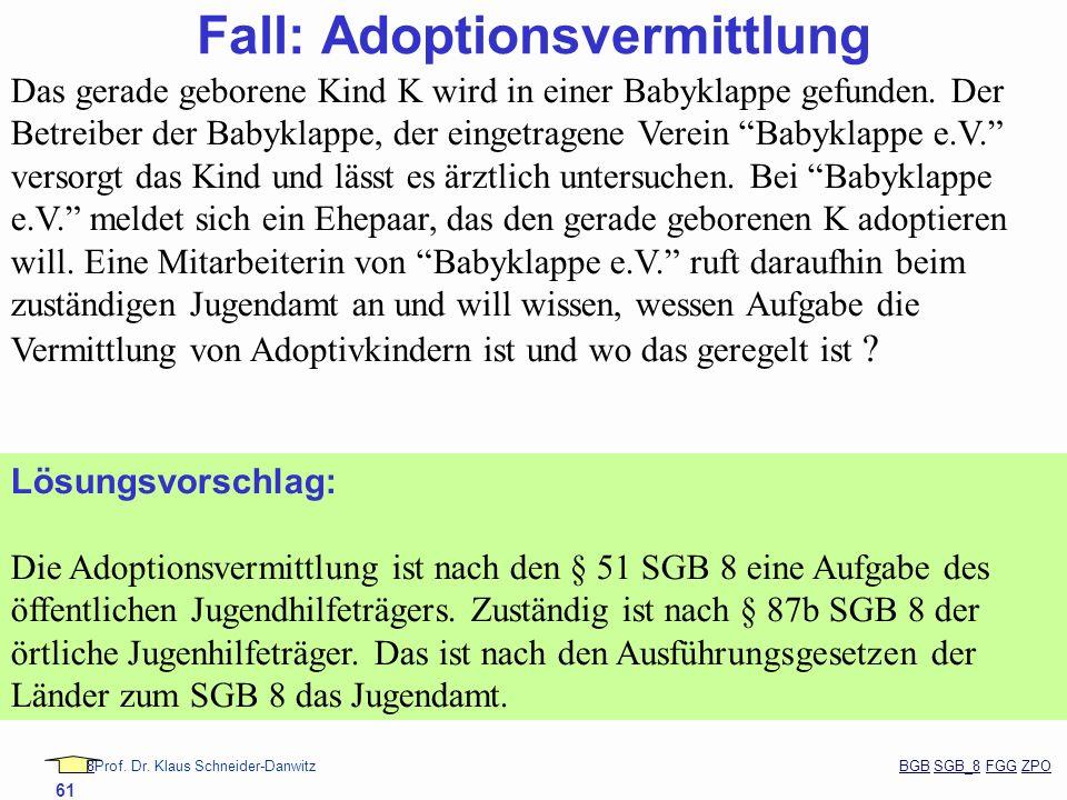 88Prof. Dr. Klaus Schneider-Danwitz BGB SGB_8 FGG ZPOBGBSGB_8FGGZPO 61 Fall: Adoptionsvermittlung Das gerade geborene Kind K wird in einer Babyklappe