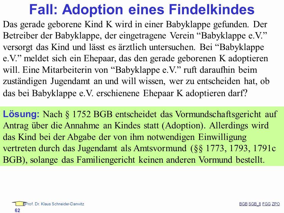 88Prof. Dr. Klaus Schneider-Danwitz BGB SGB_8 FGG ZPOBGBSGB_8FGGZPO 62 Fall: Adoption eines Findelkindes Das gerade geborene Kind K wird in einer Baby