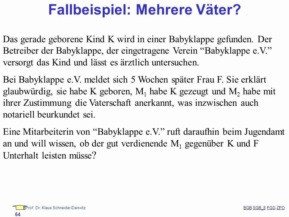 88Prof. Dr. Klaus Schneider-Danwitz BGB SGB_8 FGG ZPOBGBSGB_8FGGZPO 64 Fallbeispiel: Mehrere Väter? Das gerade geborene Kind K wird in einer Babyklapp