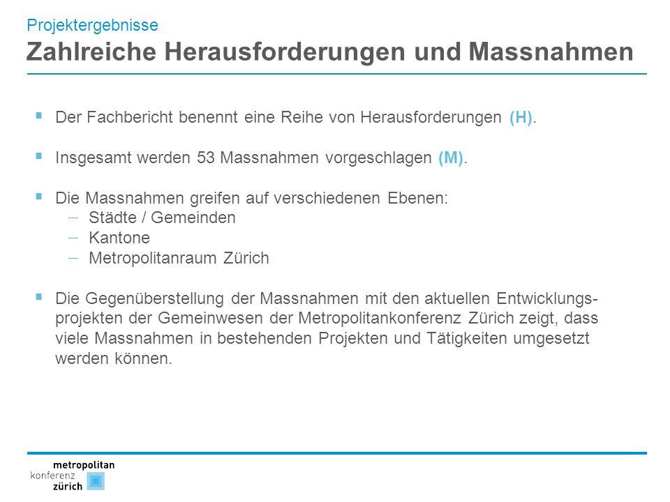 Projektergebnisse Zahlreiche Herausforderungen und Massnahmen Der Fachbericht benennt eine Reihe von Herausforderungen (H). Insgesamt werden 53 Massna