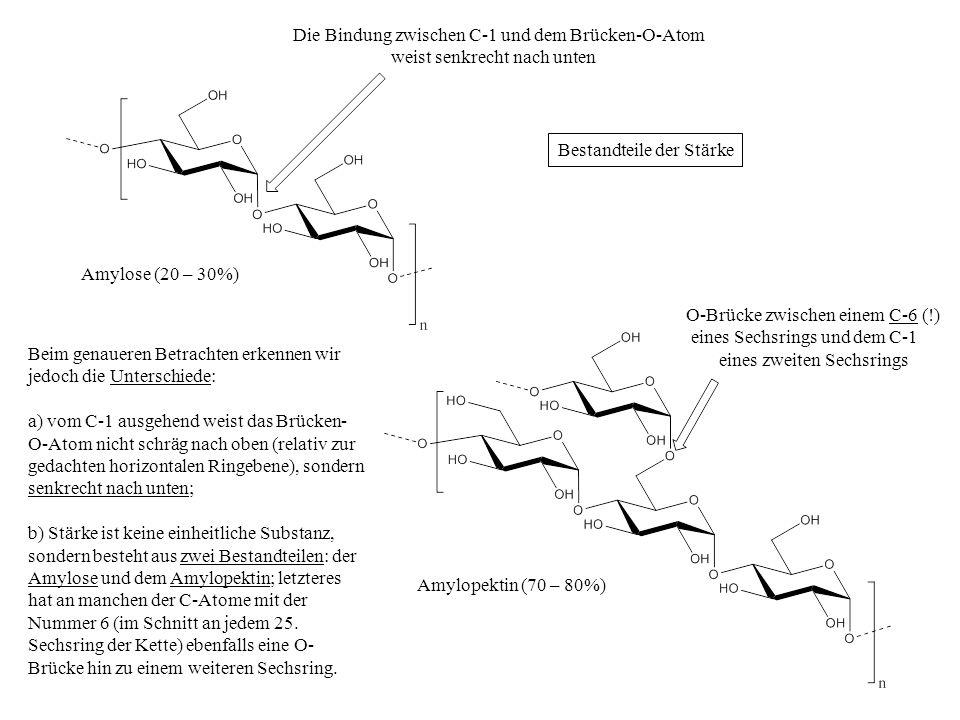 Amylose (20 – 30%) Amylopektin (70 – 80%) Beim genaueren Betrachten erkennen wir jedoch die Unterschiede: a) vom C-1 ausgehend weist das Brücken- O-At