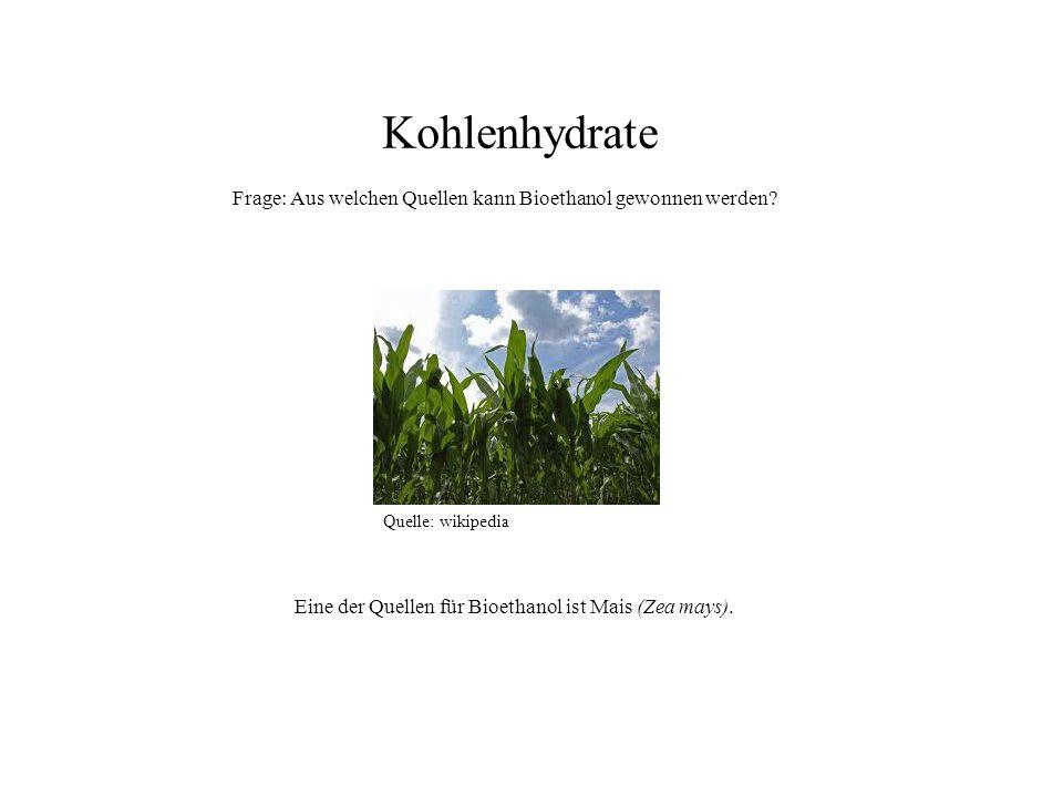 Quelle: wikipedia Eine der Quellen für Bioethanol ist Mais (Zea mays). Kohlenhydrate Frage: Aus welchen Quellen kann Bioethanol gewonnen werden?