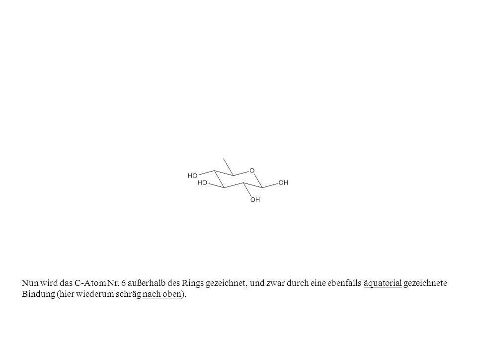 Nun wird das C-Atom Nr. 6 außerhalb des Rings gezeichnet, und zwar durch eine ebenfalls äquatorial gezeichnete Bindung (hier wiederum schräg nach oben