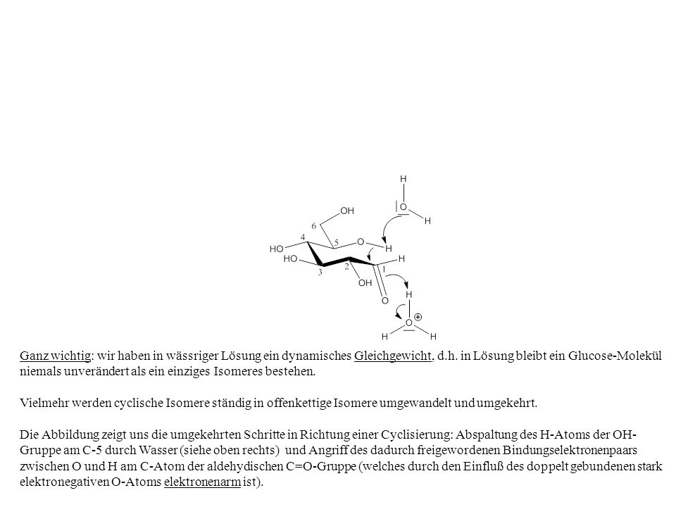 Ganz wichtig: wir haben in wässriger Lösung ein dynamisches Gleichgewicht, d.h. in Lösung bleibt ein Glucose-Molekül niemals unverändert als ein einzi