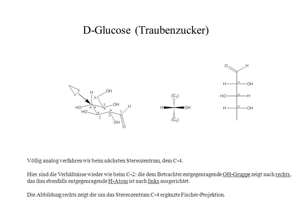 D-Glucose (Traubenzucker) Völlig analog verfahren wir beim nächsten Stereozentrum, dem C-4. Hier sind die Verhältnisse wieder wie beim C-2: die dem Be