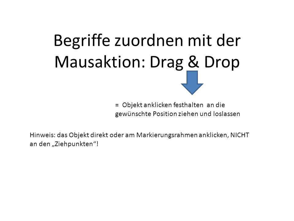 Begriffe zuordnen mit der Mausaktion: Drag & Drop = Objekt anklicken festhalten an die gewünschte Position ziehen und loslassen Hinweis: das Objekt di
