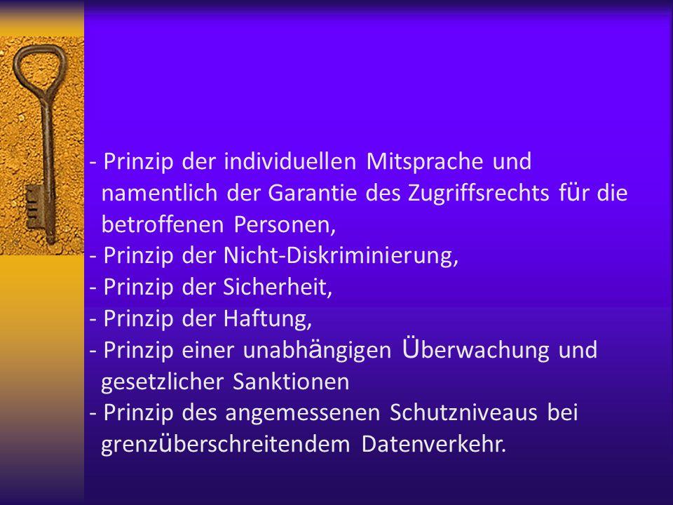 - Prinzip der individuellen Mitsprache und namentlich der Garantie des Zugriffsrechts f ü r die betroffenen Personen, - Prinzip der Nicht-Diskriminier