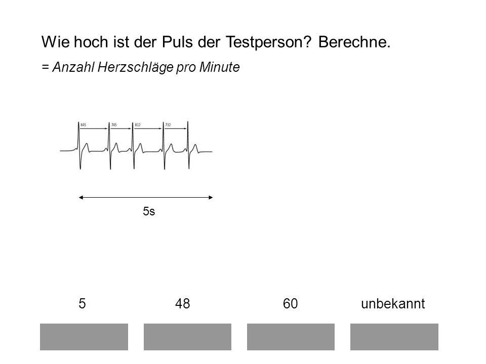 Wie hoch ist der Puls der Testperson.Berechne.