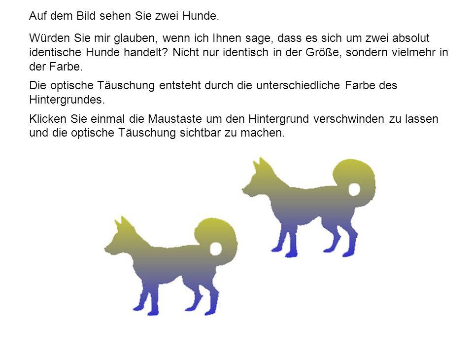 Auf dem Bild sehen Sie zwei Hunde. Würden Sie mir glauben, wenn ich Ihnen sage, dass es sich um zwei absolut identische Hunde handelt? Nicht nur ident