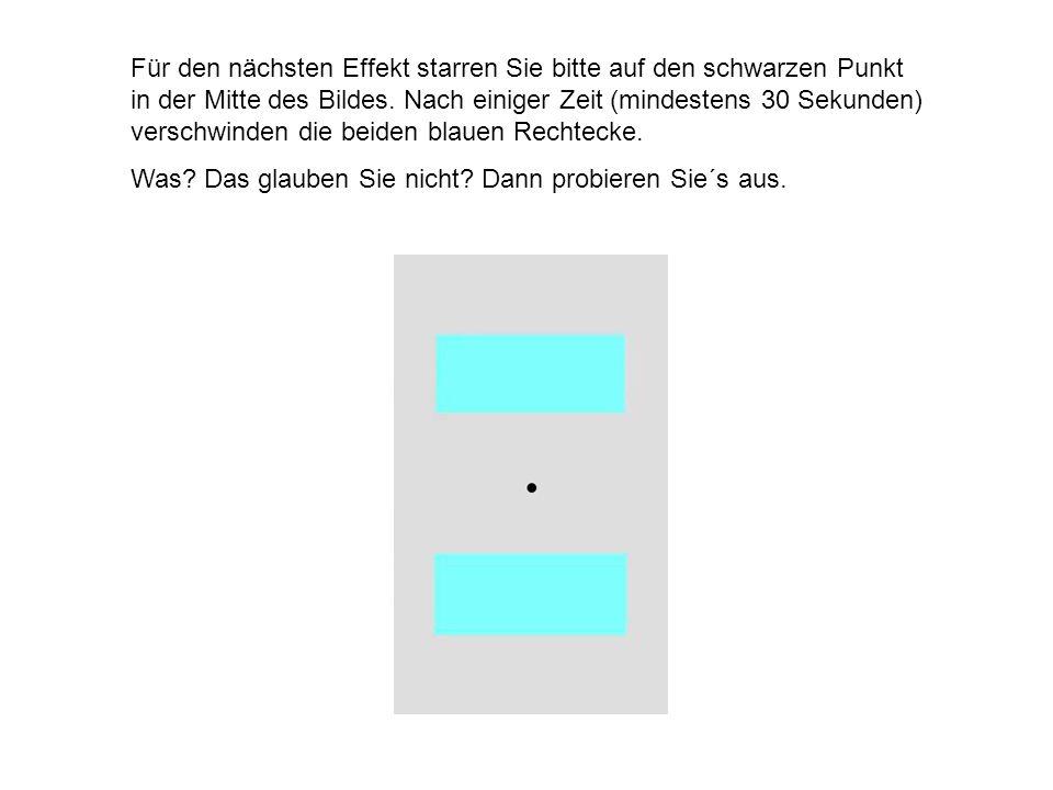 Für den nächsten Effekt starren Sie bitte auf den schwarzen Punkt in der Mitte des Bildes. Nach einiger Zeit (mindestens 30 Sekunden) verschwinden die