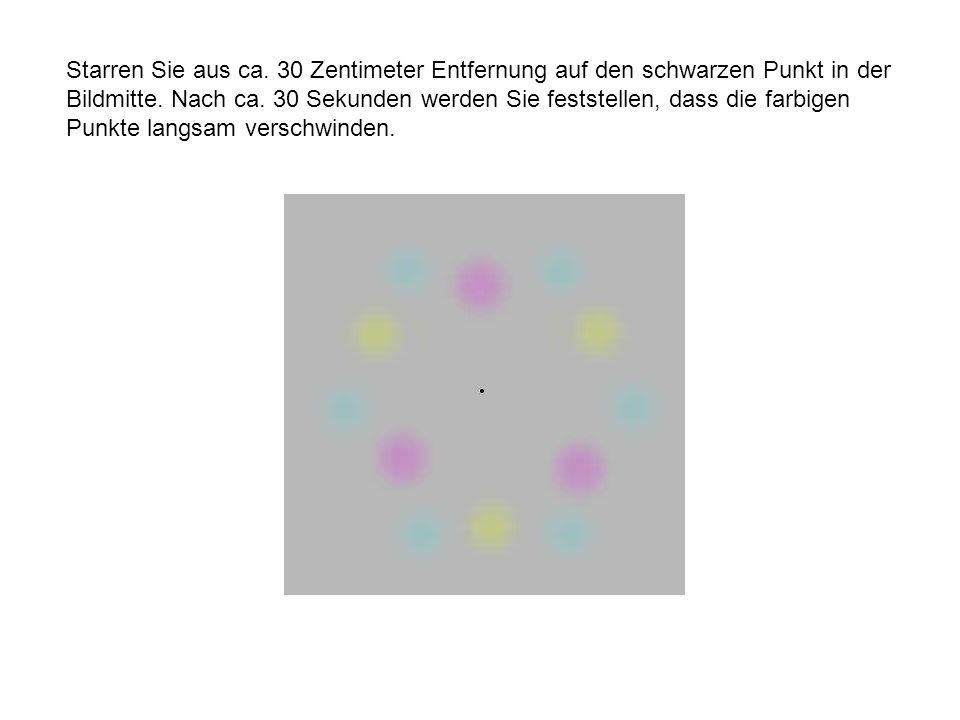 Starren Sie aus ca. 30 Zentimeter Entfernung auf den schwarzen Punkt in der Bildmitte. Nach ca. 30 Sekunden werden Sie feststellen, dass die farbigen