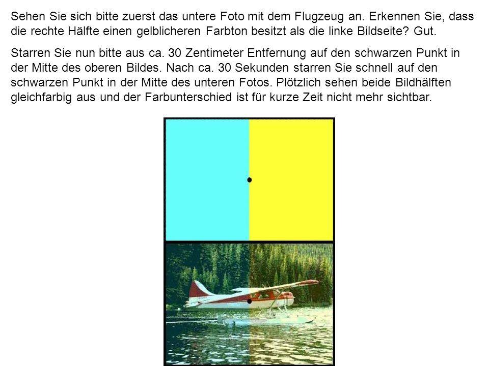 Sehen Sie sich bitte zuerst das untere Foto mit dem Flugzeug an. Erkennen Sie, dass die rechte Hälfte einen gelblicheren Farbton besitzt als die linke