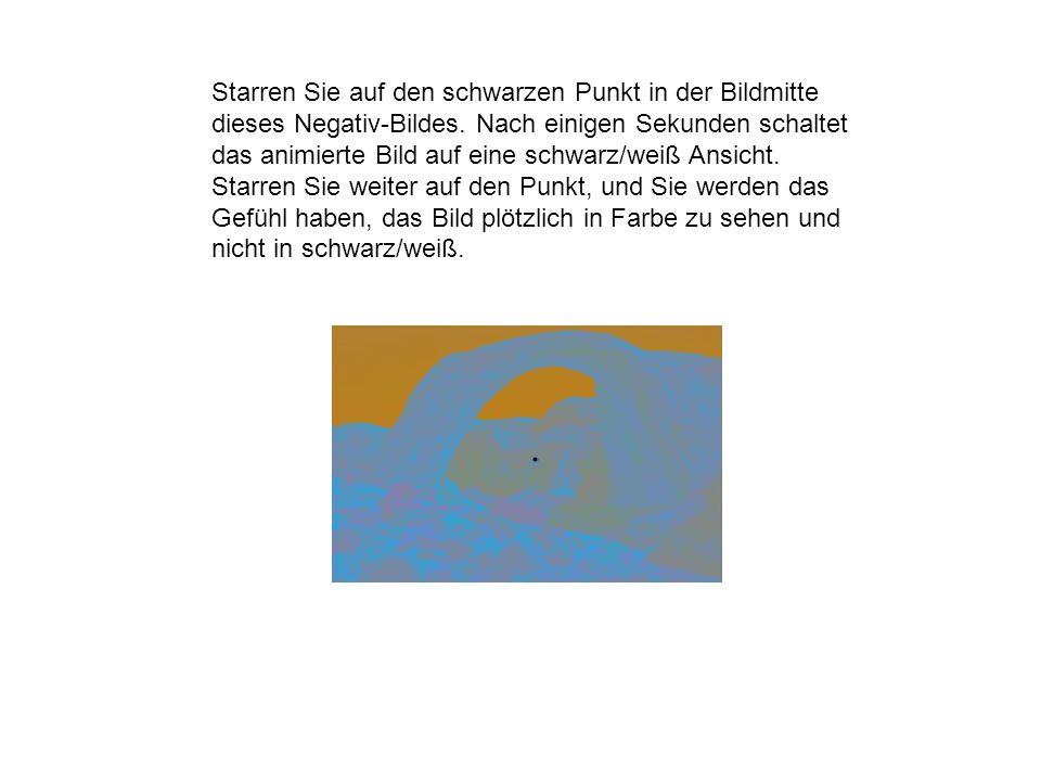 Starren Sie auf den schwarzen Punkt in der Bildmitte dieses Negativ-Bildes. Nach einigen Sekunden schaltet das animierte Bild auf eine schwarz/weiß An