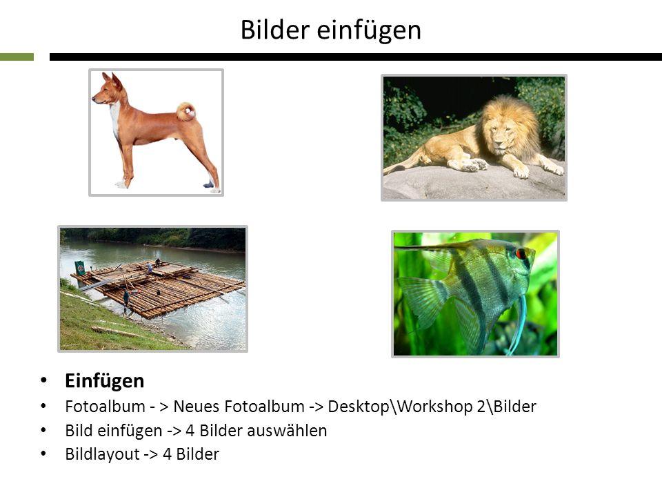 Bilder einfügen Einfügen Fotoalbum - > Neues Fotoalbum -> Desktop\Workshop 2\Bilder Bild einfügen -> 4 Bilder auswählen Bildlayout -> 4 Bilder