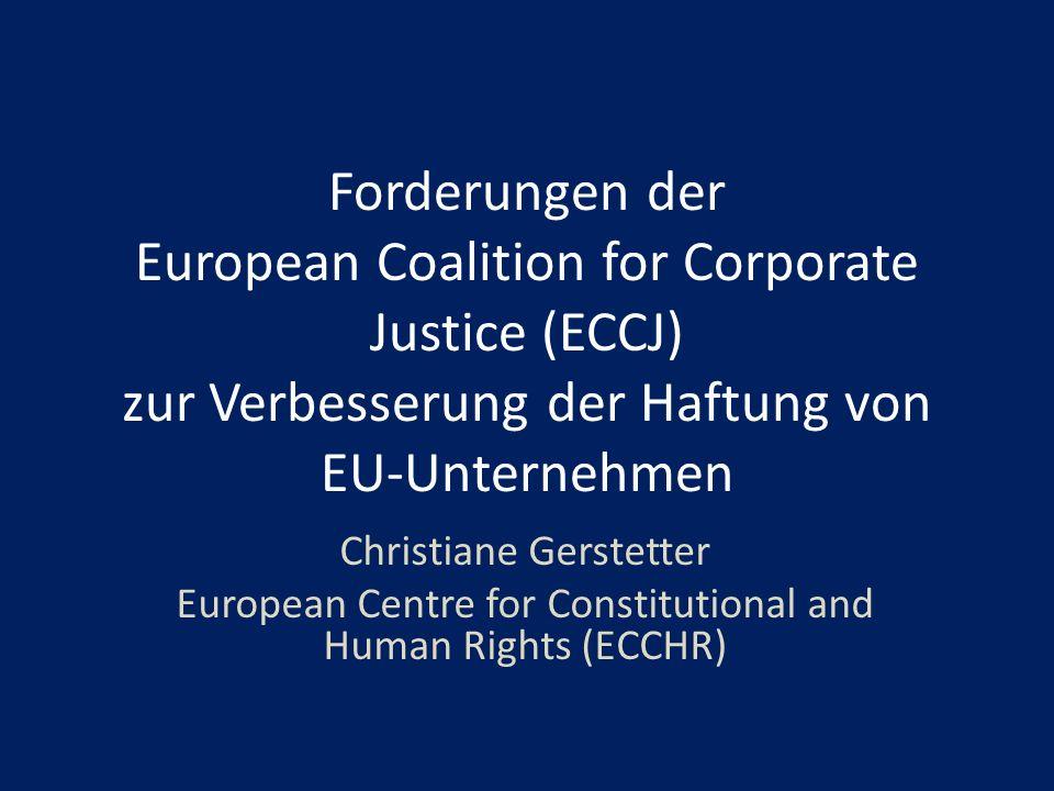 Forderungen der European Coalition for Corporate Justice (ECCJ) zur Verbesserung der Haftung von EU-Unternehmen Christiane Gerstetter European Centre for Constitutional and Human Rights (ECCHR)