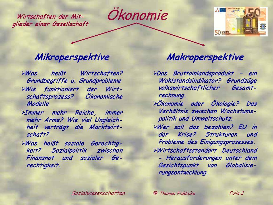 © Thomas Fiddicke Folie 2 Sozialwissenschaften Ökonomie Mikroperspektive Was heißt Wirtschaften? Grundbegriffe u. Grundprobleme Wie funktioniert der W