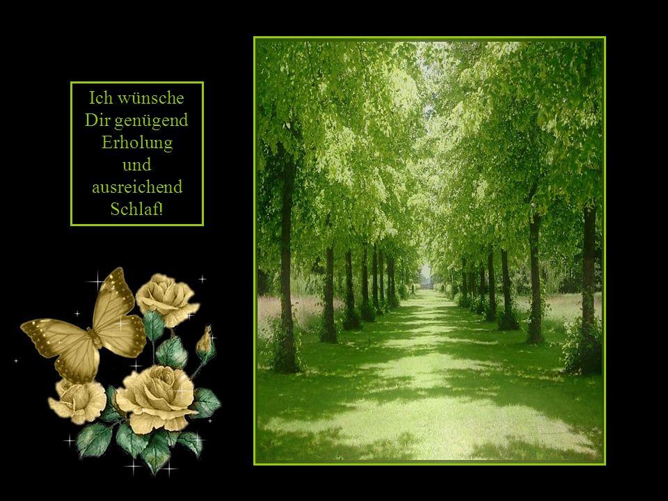 Ich wünsche Dir viele gute Gedanken und ein Herz, das überströmt in Freude und diese Freude weiterschenkt!
