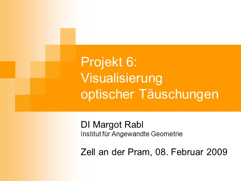Projekt 6: Visualisierung optischer Täuschungen DI Margot Rabl Institut für Angewandte Geometrie Zell an der Pram, 08. Februar 2009