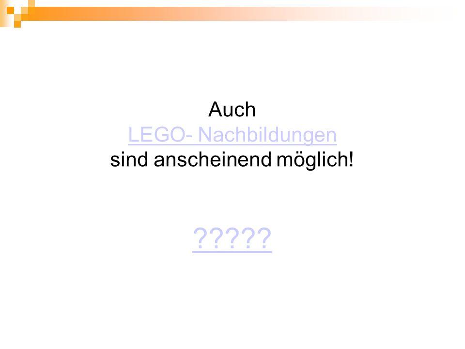 Auch LEGO- Nachbildungen sind anscheinend möglich! LEGO- Nachbildungen