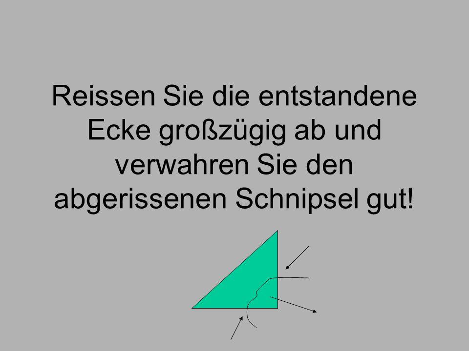 Falten Sie das entstandene Dreieck über die langen Spitzen.