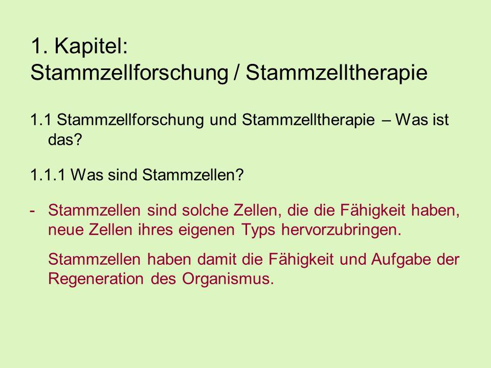 1. Kapitel: Stammzellforschung / Stammzelltherapie 1.1 Stammzellforschung und Stammzelltherapie – Was ist das? 1.1.1 Was sind Stammzellen? -Stammzelle