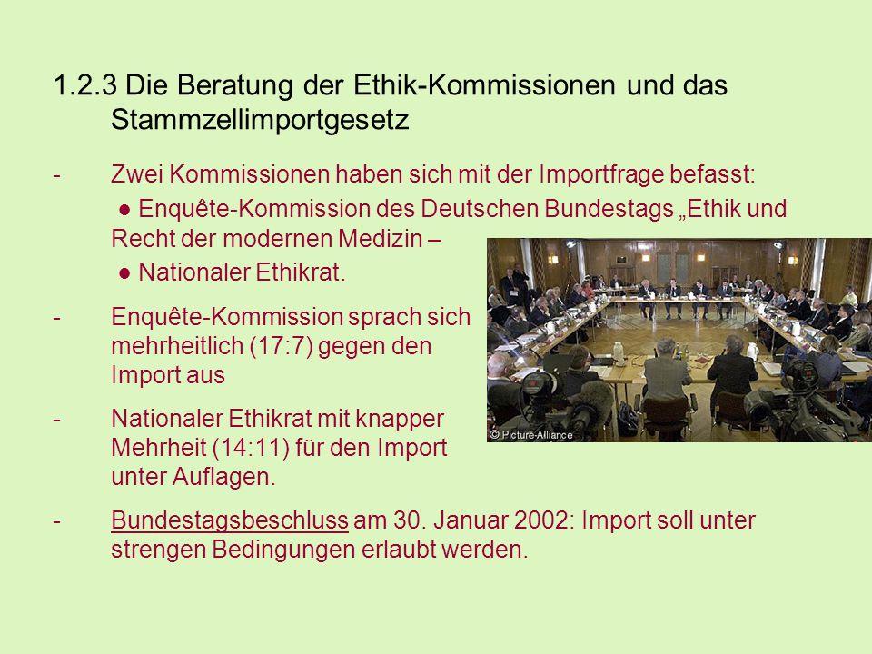 1.2.3 Die Beratung der Ethik-Kommissionen und das Stammzellimportgesetz -Zwei Kommissionen haben sich mit der Importfrage befasst: Enquête-Kommission