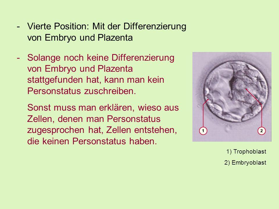 -Vierte Position: Mit der Differenzierung von Embryo und Plazenta -Solange noch keine Differenzierung von Embryo und Plazenta stattgefunden hat, kann