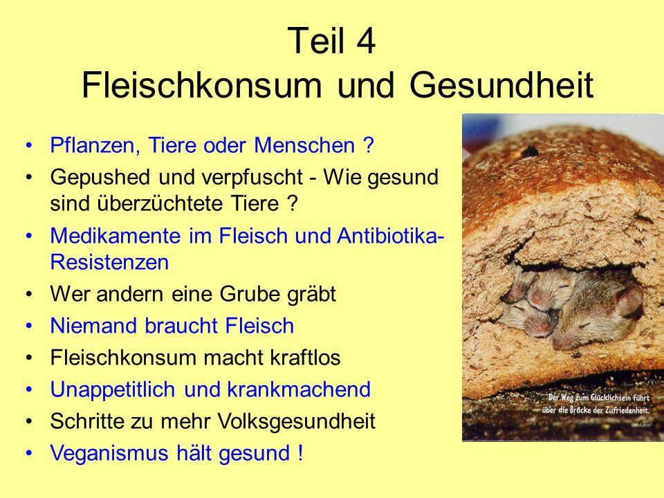 Teil 4 Fleischkonsum und Gesundheit Pflanzen, Tiere oder Menschen ? Gepushed und verpfuscht - Wie gesund sind überzüchtete Tiere ? Medikamente im Flei
