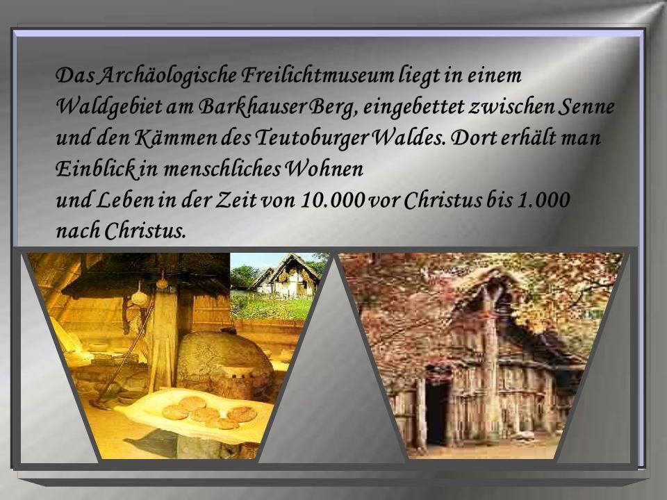 Das Archäologische Freilichtmuseum liegt in einem Waldgebiet am Barkhauser Berg, eingebettet zwischen Senne und den Kämmen des Teutoburger Waldes. Dor