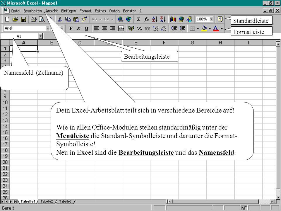Dein Excel-Arbeitsblatt teilt sich in verschiedene Bereiche auf.