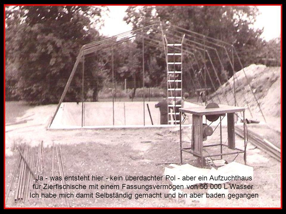 Ja - was entsteht hier - kein überdachter Pol - aber ein Aufzuchthaus für Zierfischische mit einem Fassungsvermögen von 50 000 L Wasser.