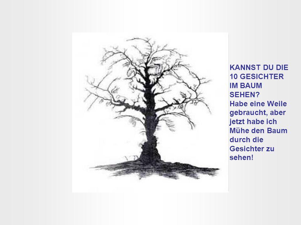 KANNST DU DIE 10 GESICHTER IM BAUM SEHEN? Habe eine Weile gebraucht, aber jetzt habe ich Mühe den Baum durch die Gesichter zu sehen!