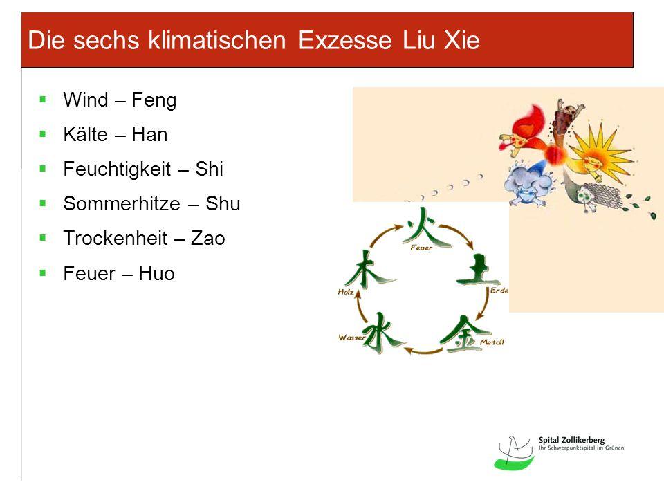 Innere Faktoren: Nei xie Die sieben Emotionen – Qi Qing FreudeXi WutNu SorgeYou NachdenkenSi TrauerBei AngstKong SchockJing