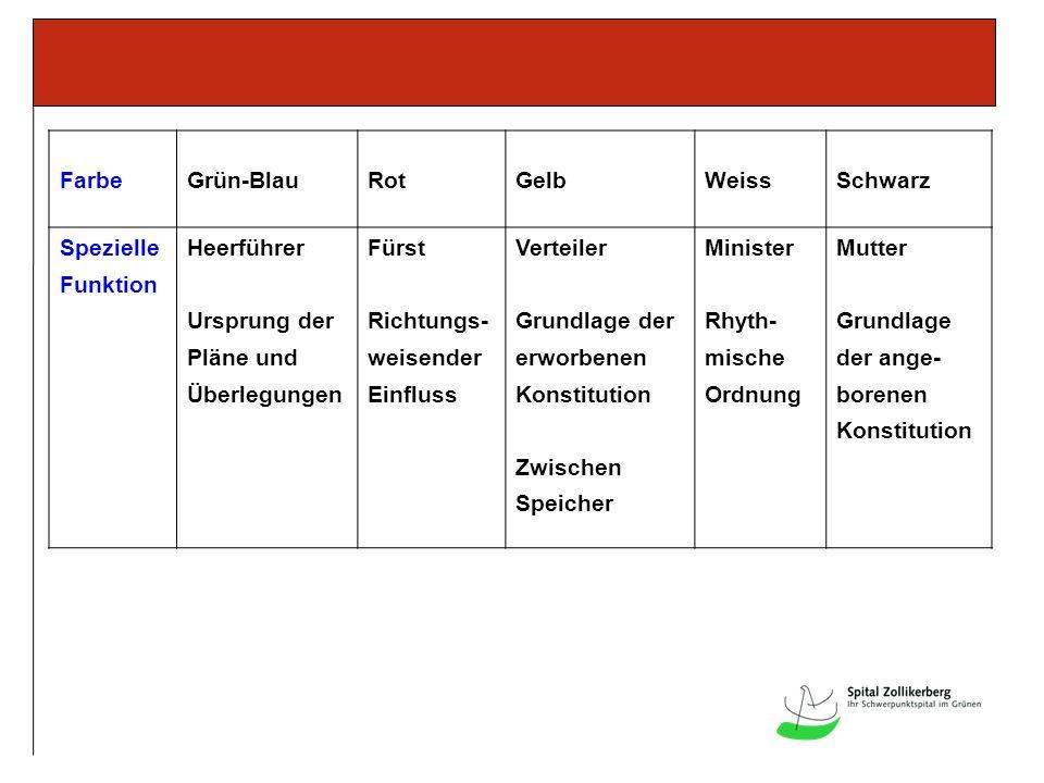FarbeGrün-BlauRotGelbWeissSchwarz Spezielle Funktion Heerführer Ursprung der Pläne und Überlegungen Fürst Richtungs- weisender Einfluss Verteiler Grun