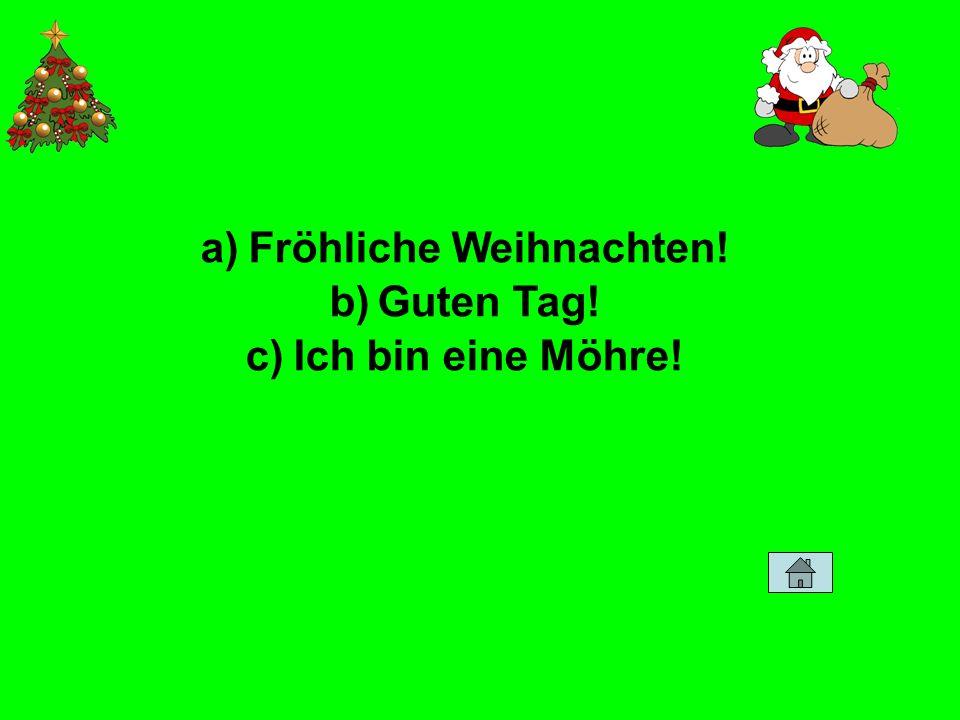 a)Fröhliche Weihnachten! b)Guten Tag! c)Ich bin eine Möhre!