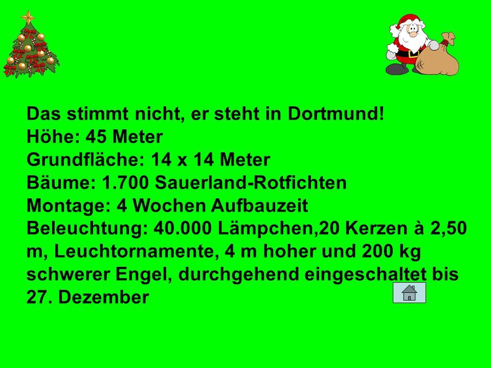 Das stimmt nicht, er steht in Dortmund! Höhe: 45 Meter Grundfläche: 14 x 14 Meter Bäume: 1.700 Sauerland-Rotfichten Montage: 4 Wochen Aufbauzeit Beleu