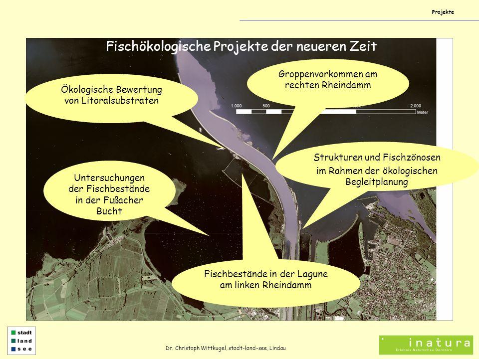 Projekte Dr. Christoph Wittkugel, stadt-land-see, Lindau Fischökologische Projekte der neueren Zeit Untersuchungen der Fischbestände in der Fußacher B