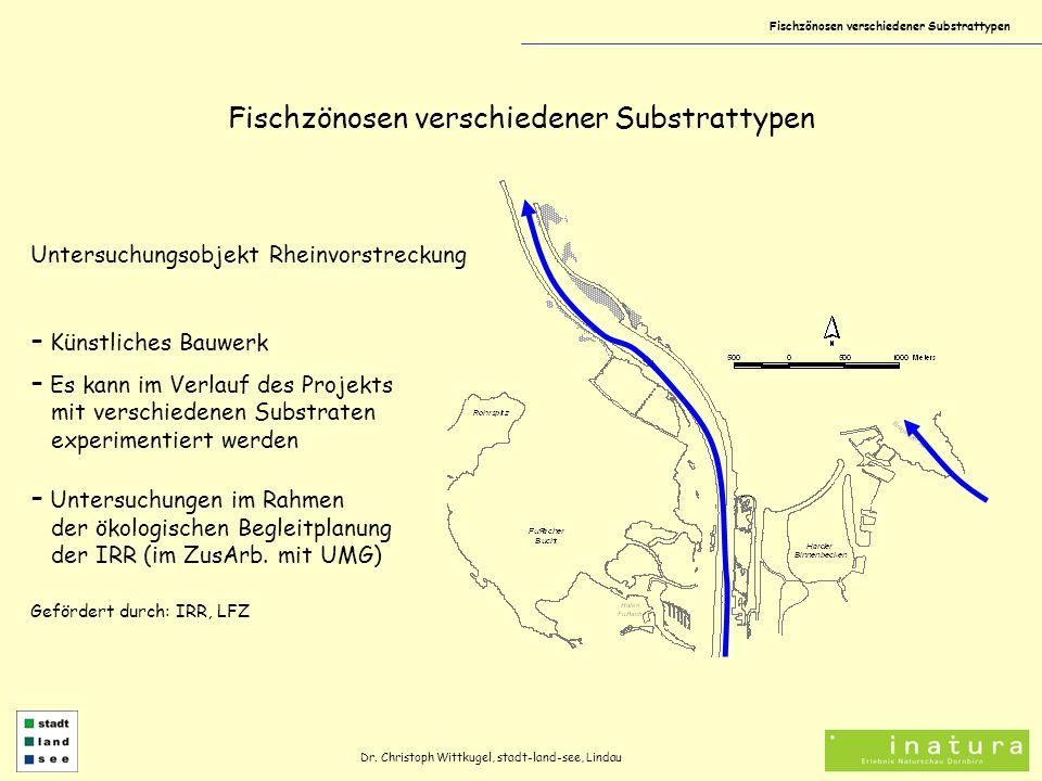 Fischzönosen verschiedener Substrattypen Untersuchungsobjekt Rheinvorstreckung - Künstliches Bauwerk - Es kann im Verlauf des Projekts mit verschiedenen Substraten experimentiert werden Dr.