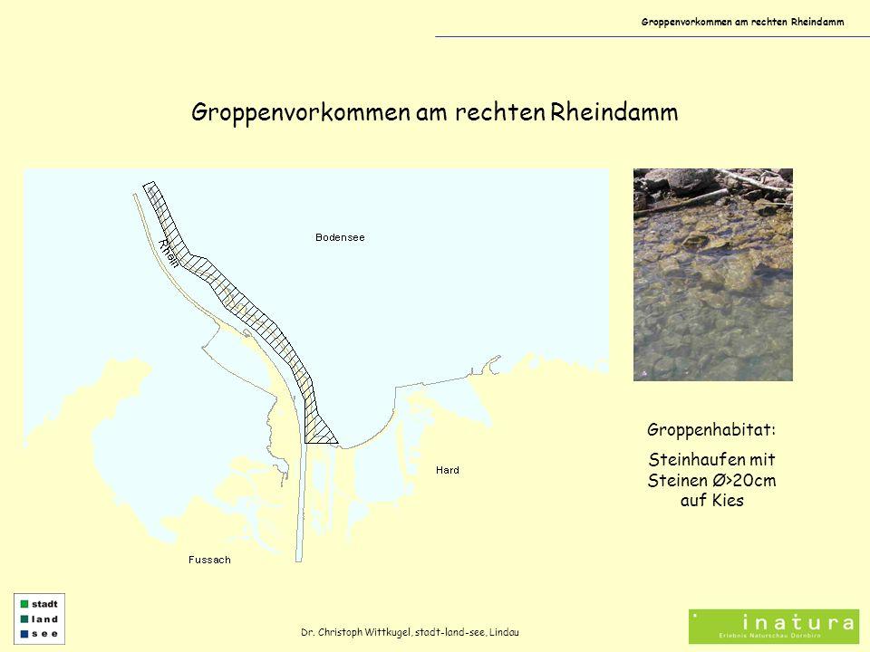 Groppenvorkommen am rechten Rheindamm Dr. Christoph Wittkugel, stadt-land-see, Lindau Groppenhabitat: Steinhaufen mit Steinen Ø>20cm auf Kies